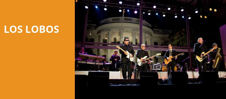 Los Lobos, Elevation 27, Norfolk